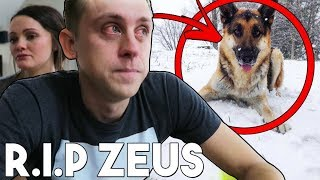 Last Footage Of Zeus Atwood! (Roman Atwood's Dog) RIP :( Please watch