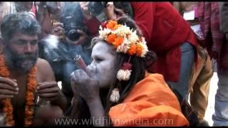 Holy people taking good hits from Chillum - Ardh Kumbh, 2007