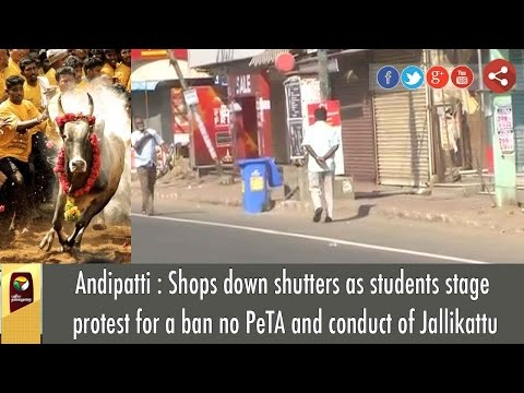 Xxx Mp4 Shops Down Shutters As Students Stage Protest For A Ban No PeTA And Conduct Of Jallikattu 3gp Sex
