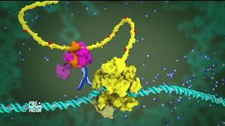 These 3D animations could help you finally understand molecular science