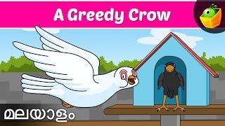 Greedy Crow   Jataka Tales In Malayalam   Magicbox Malayalam Stories