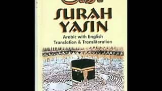 SURAH YASIN  QURAN Audio urdu hindi translation wmv   YouTube