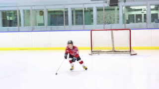 7 Year Old Hockey Player
