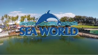 VLOG : SEA WORLD GOLD COAST AUSTRALIA