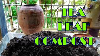 Tea Leaf Compost With Neem For Seed Starting