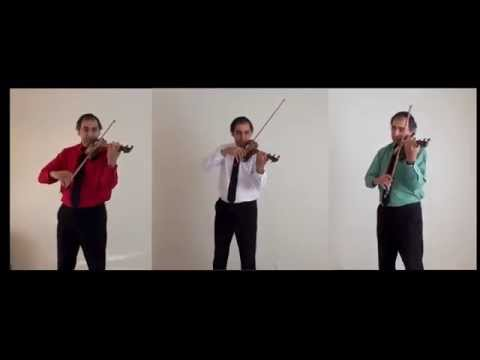 Pachelbel's Canon in D Major: A Trio by Babak Sabetian on Delodel