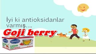 Ersağ goji berry/zayıflama ürünleri