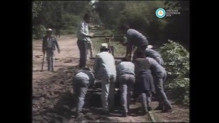 """""""Historias de la Argentina secreta"""": el ramal olvidado del Tigre, 1989"""