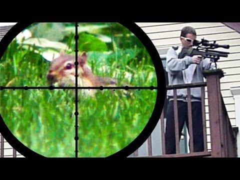 Chipmunk Pest Control Air Rifle Hunting June 25 2011