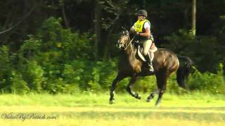 Claire Hill on Bob Marley, OE, Fair Hill Starter Horse Trials. 9/11/2010