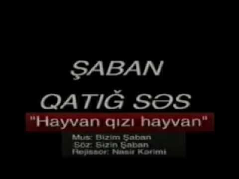 Saban Heyvan Gizi Heyvan