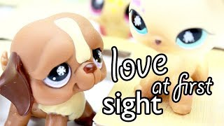 LPS - LOVE AT FIRST SIGHT!! (FUNNY SKIT)