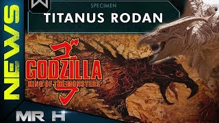 RODAN New Details Explained Origin & Powers Godzilla King Of The Monsters