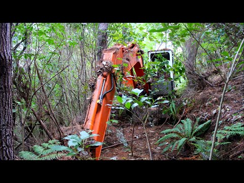 Abandoned Excavator left in woods for 16 years Will it start