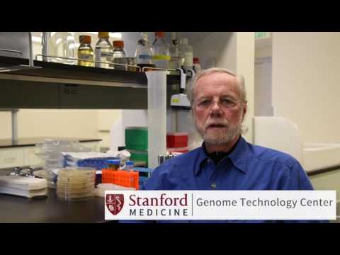 An Update on ME/CFS Research with Dr. Ronald W. Davis