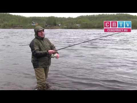 рыбалка на семгу на кольском
