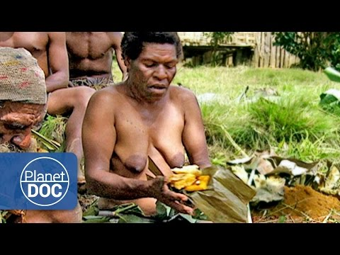 Xxx Mp4 Cooking In The Jungle Tribes Ethnic Groups Planet Doc Full Documentaries 3gp Sex
