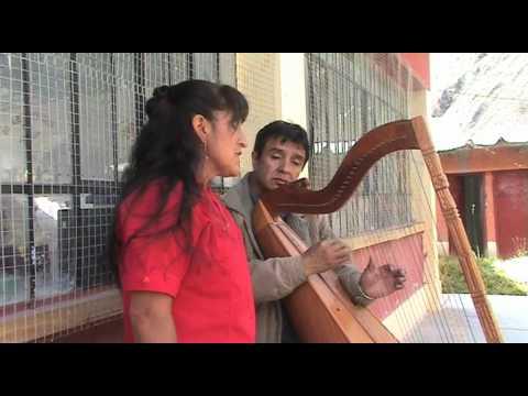 Arpista Harpist Harfenist Arpa de Los Andes PERU