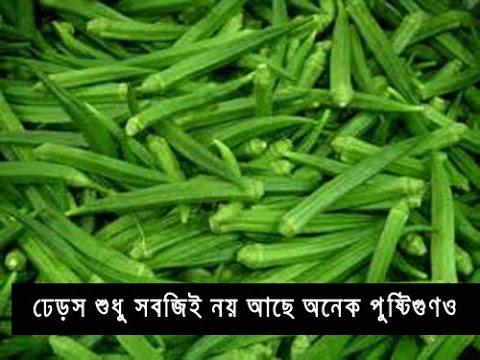 Xxx Mp4 ঢেড়স এর এতো লাভ Bangla Health Tips Bangla Sex Tips Bangla Beauty Tips 3gp Sex
