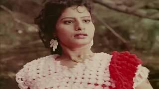 Malayalam Full Movie | P Sukumar | Abhilasha | Evergreen Malayalam Hit Movie