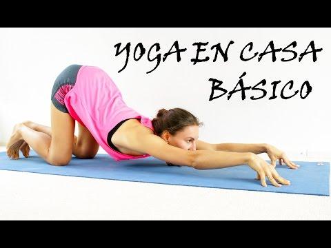 Xxx Mp4 Yoga Para Principiantes Básico Todo Cuerpo Día 1 3gp Sex