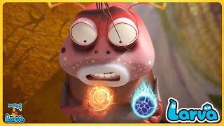 Larva: Brown( Season 3) Cartoons - Comics 🍟 Comedy Movies 2020   New Animation Movies 2020