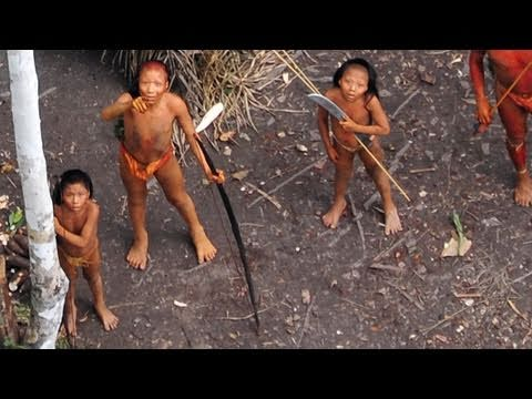 Uncontacted Amazon Tribe: First ever aerial footage