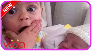 Baby Meets Their Little Brother And Sister At the First Time Very Hilarious