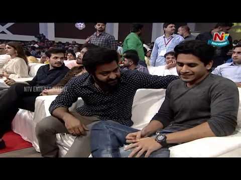 Xxx Mp4 Jr NTR Entry Mr Majnu Pre Release Event Nagarjuna Akhil Nidhhi Agerwal NTV Ent 3gp Sex