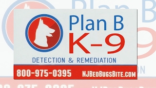 Plan B K-9 Bedbug detection Detection and Services LLC - Serving all of NJ