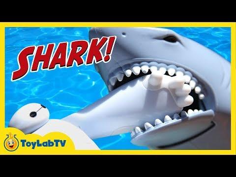 Batman Spiderman & Baymax Toys Attacked by Shark & Hiro & Elsa are Stranded on Dino Island ToyLabTV