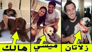 أسماء غريبة أطلقها نجوم كرة القدم على كلابهم .. تعرف على السبب !