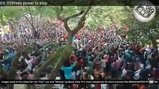Surya fans Tsk celebration