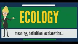 What is ECOLOGY? What does ECOLOGY mean? ECOLOGY meaning, definition, explanation & pronunciation