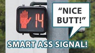 Smart Ass Crosswalk Signal!