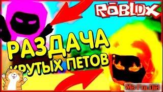 СТРИМ В РОБЛОКС !Free Pets. Раздача петов в пет Bubble Gum, magnet and Pet Simulator Roblox!! HUGE !