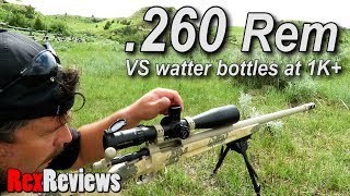.260 VS water bottles @ 1,072 - TOO EASY with APA! ~ Rex Reviews
