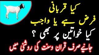Qurbani Farz hai ya Sunnat|Qurbani Kis par wajib ha|Kia Qurbani aurat par farz ha