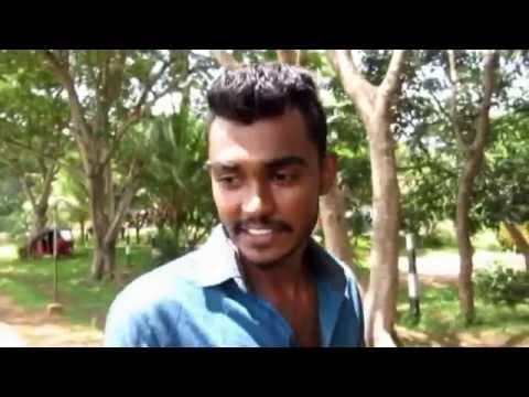 Sri Lanka School Of Agriculture Pelwehera 2015/17 (official video-2016)