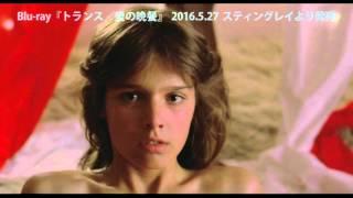 『トランス/愛の晩餐』 Blu-ray用トレイラー TRANCE (DER FAN)