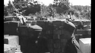 Eesti ringvaade. Estnischen rundschau (1944)