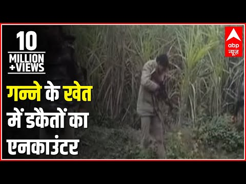 LIVE ENCOUNTER: Ghaziabad police besiege dacoits in a sugarcane field, open fire
