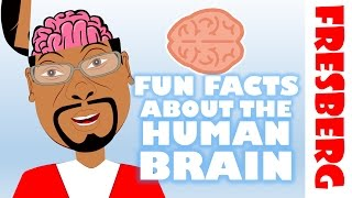 Fun Facts about the Brain for Kids: Interesting facts about the human brain (Educational)
