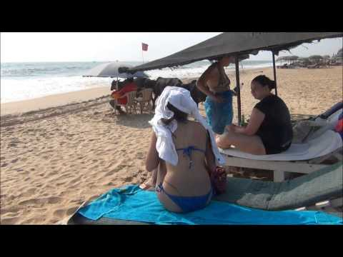 Candolim Beach,Goa, cows bother Russian girls