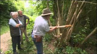 Battle of the flint axes: mesolithic versus neolithic