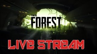 ING LIVE: The Forest Co-Op ep2