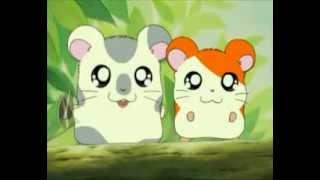 Hamtaro en streaming - Episode 001 [FR]