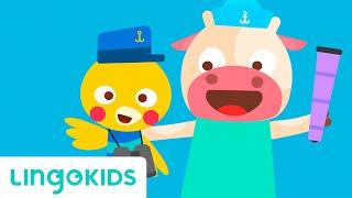 A Sailor Went to Sea - Nursery Rhymes & Kids Song - Lingokids