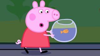 Peppa Pig English Episodes   Peppa goes to the Aquarium   Cartoons for Children #178