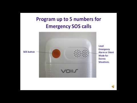 Voice V3g
